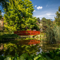 Green Zagreb: Pleasure at a Distance